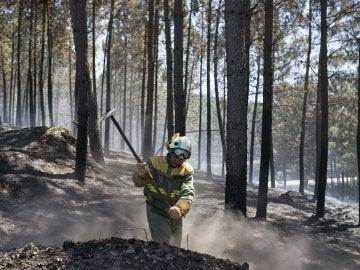 La superficie quemada en Verín (Ourense) se mantiene en las 1.360 hectáreas