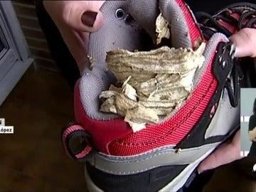 Una vecina de durango encuentra en la bota de su hijo una colmena de avispas asiáticas