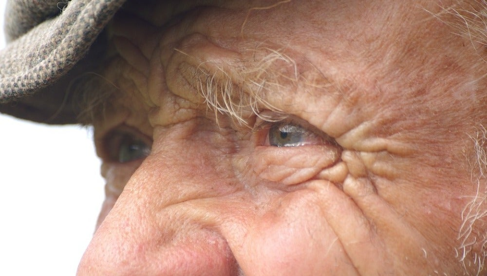 Tres Frases Para El Día Mundial Del Alzheimer 2019 Antena