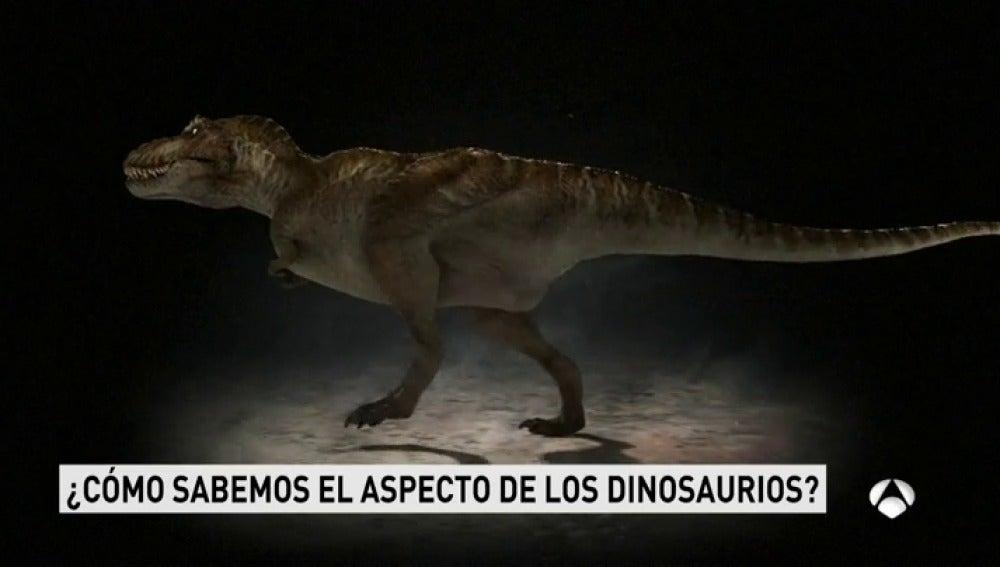 dimnosaurios