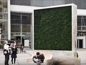 'City tree' contra la polución en una ciudad