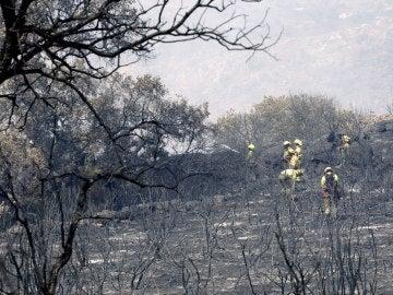 Incendio en Fermoselle, Zamora