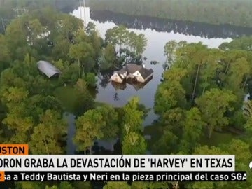 DRON_HARVEY