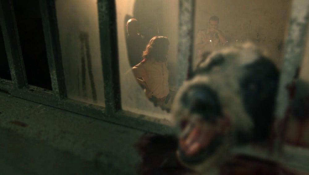 Alicia descubre el primer episodio aterrador: todos los animales amanecen muertos
