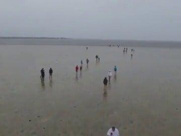 Irma seca playas a su paso por Florida
