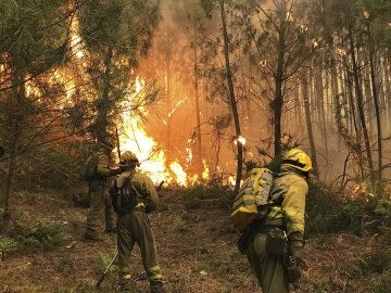 Cuatro focos intencionados causaron el fuego de 1.500 hectáreas de Ponteareas