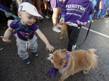 Un niño, en la carrera con un perro