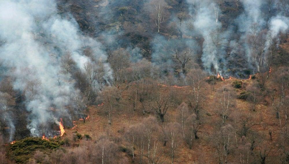 Los incendios en Asturias bajan a 27