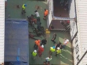 Los 16 polizones rescatados