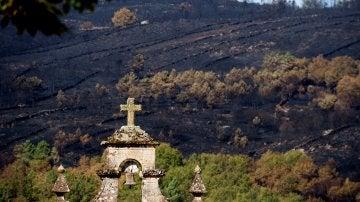 Paisaje calcinado por los incendios forestales