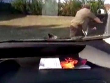 Un jabalí ataca a uno de sus rescatadores después de haberlo liberado de una balsa en Miñano
