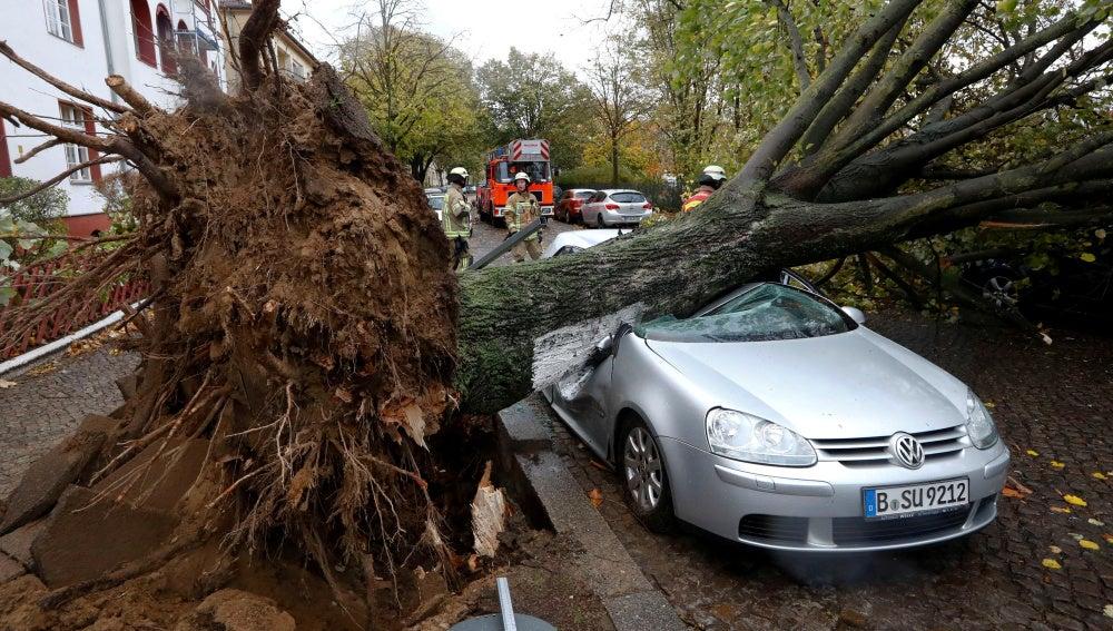 Graves daños en un coche tras la caída de un árbol por el temporal en Berlín