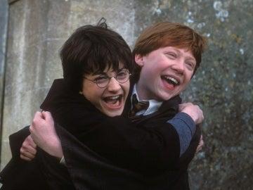 Harry y Ron siendo tiernos