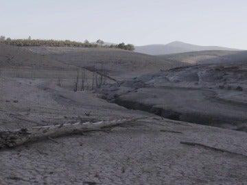 Las imágenes de la sequía