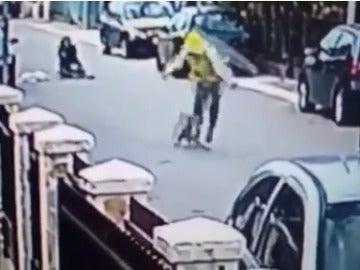 Un perro salva a una mujer de un robo