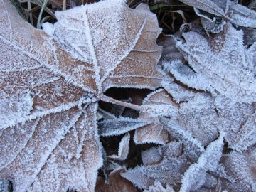 Imagen de archivo: Frío.