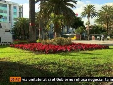 Robo de flores de Pascua en Canarias