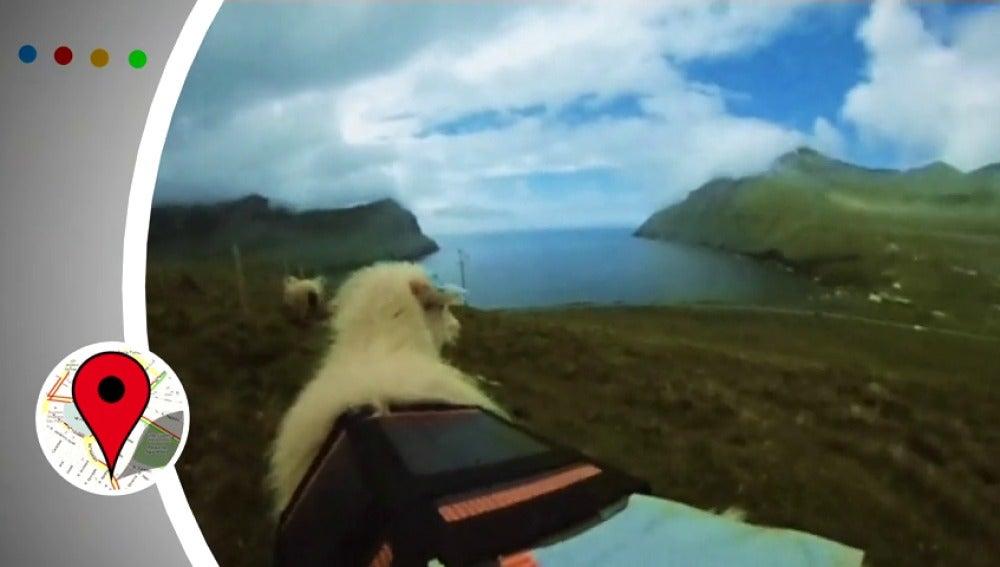 Las islas Feore ya tienen Google Street View hecho por ovejas