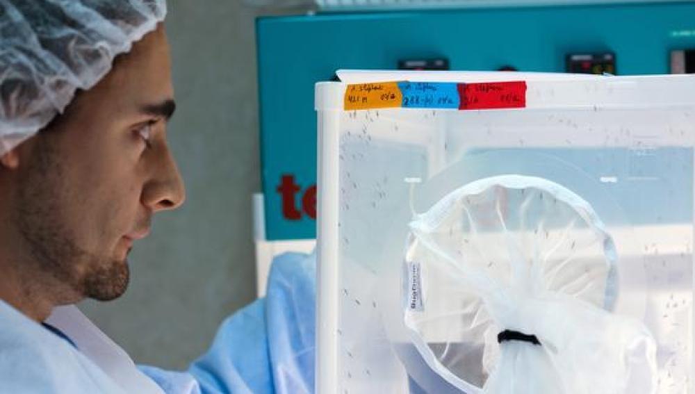 Publican un estudio que revela que el precio de los medicamentos oncológicos se ha duplicado en los últimos diez años.