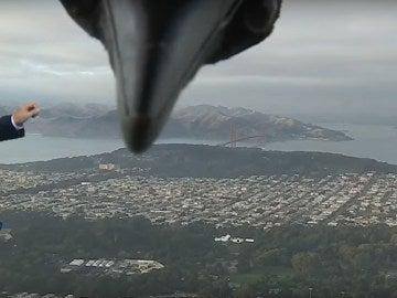 Un pájaro interrumpe el tiempo de San Francisco