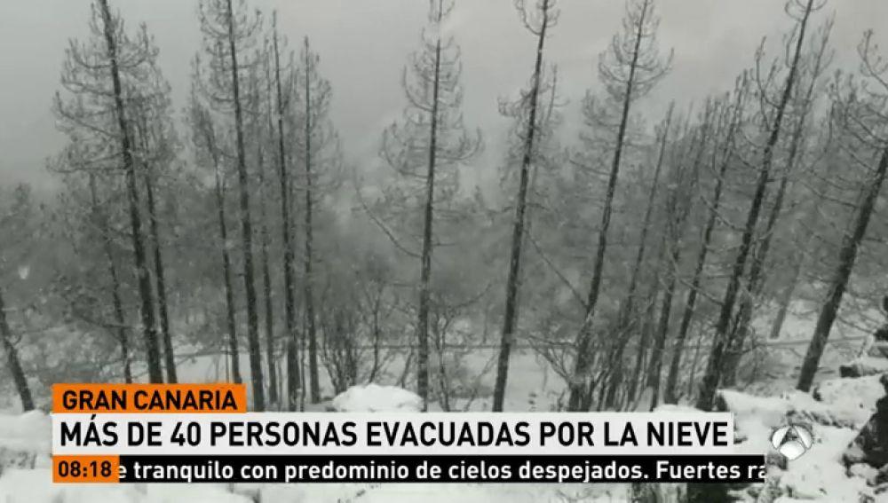Evacúan a unas 40 personas, entre ellas niños y mujeres embarazadas, de la cumbre de Gran Canaria