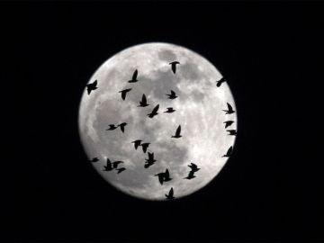 La 'superluna' fotografiada desde Italia