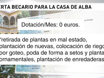 La Casa de Alba solicita becarios gratis para trabajar en el Palacio de Dueñas
