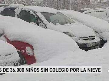 COLES CATALUNA - SUSTITUIR
