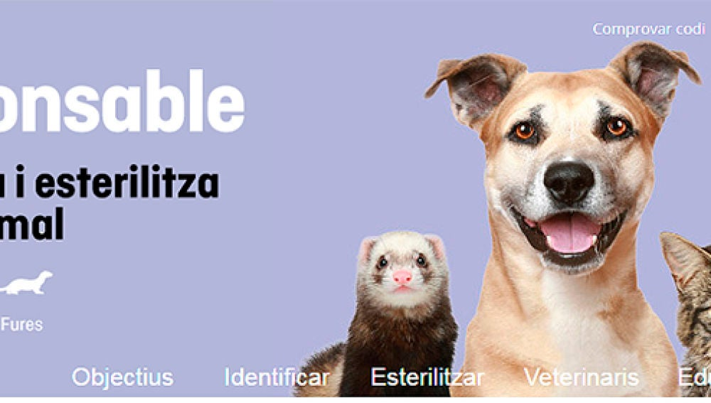 Imagen de la web 'Soy Responsable'