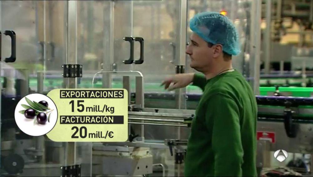 Inspectores estadounidenses visitan varias empresas de aceituna negra en Sevilla para decidir si mantienen los aranceles