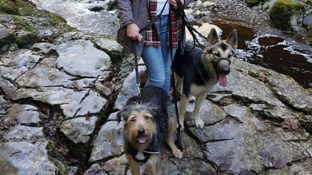 Colette Kilroy junto a sus dos perros