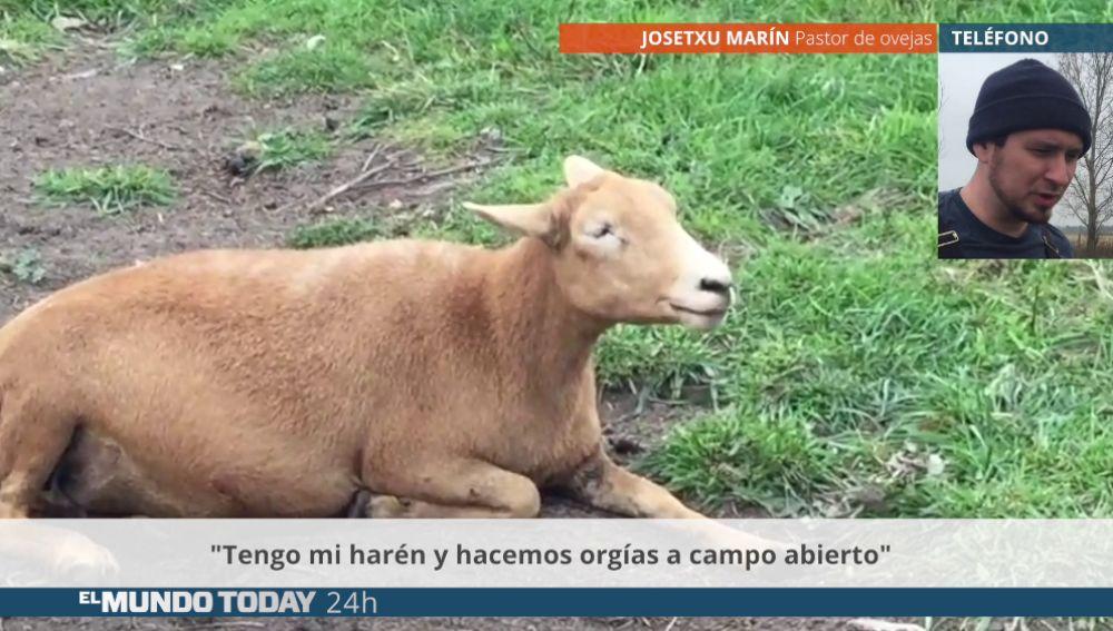 ovejamundo.png