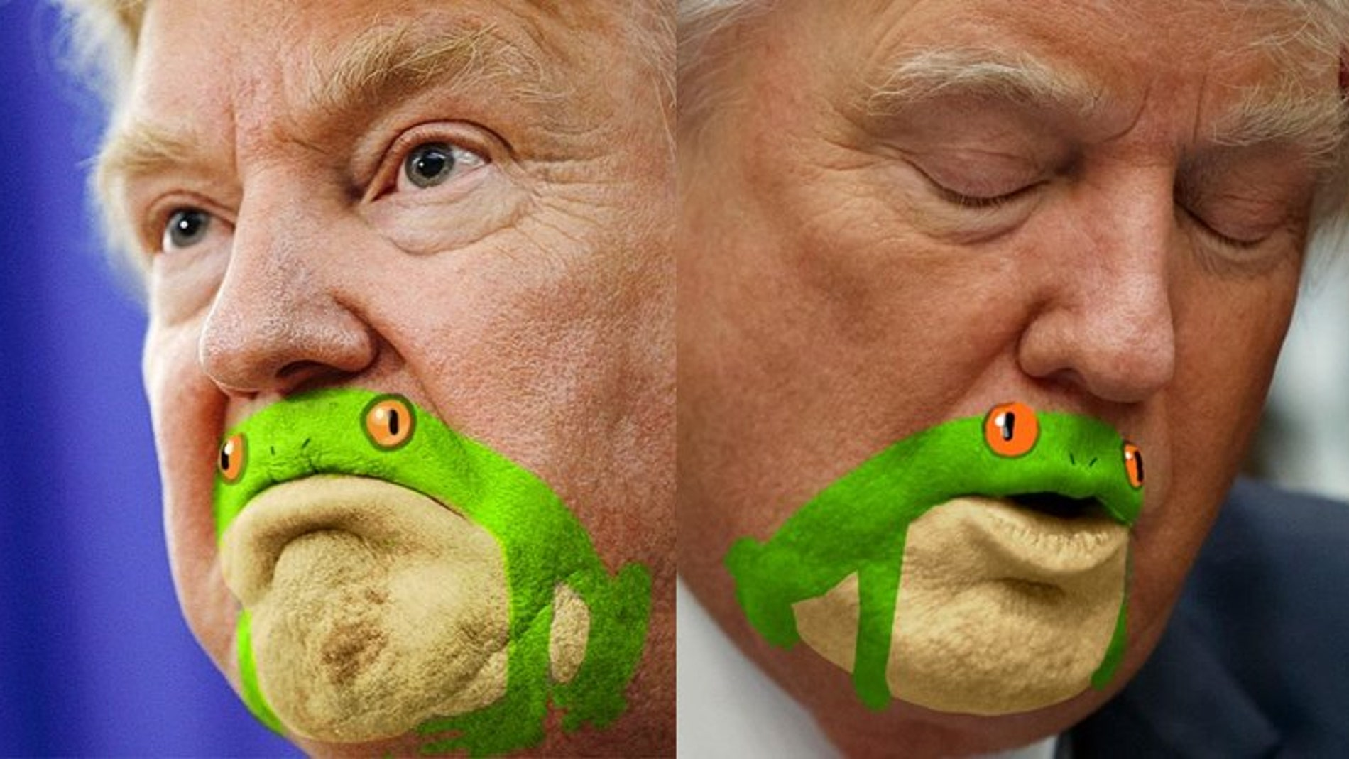 donald-trump-frog_twitter_759.jpg