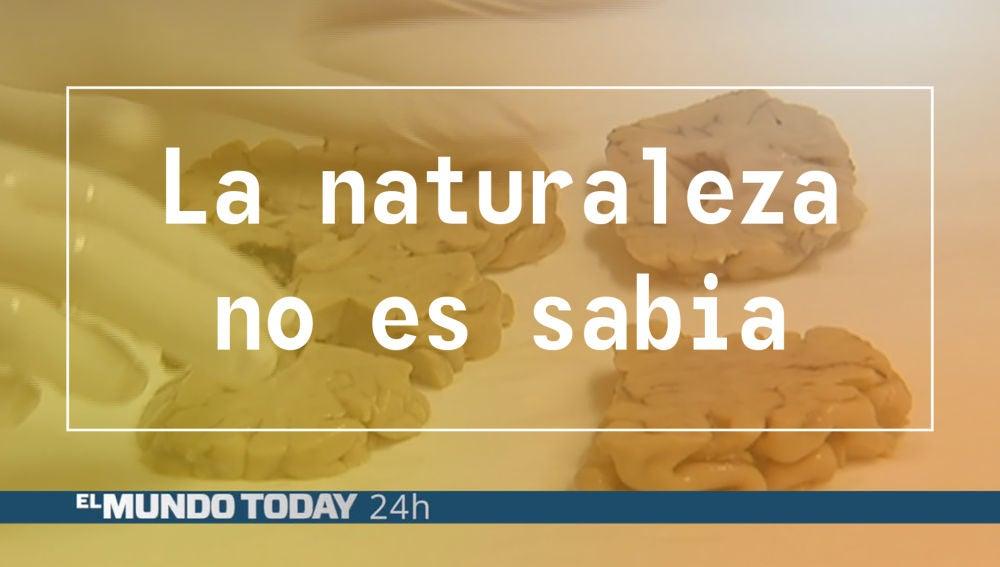 naturalezasabia2.jpg