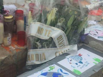 Flores que ha colocado la Guardia Civil en el homenaje a Gabriel Cruz en la estatua de La Ballena