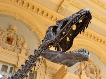 El esqueleto del dinosaurio que sale a subasta