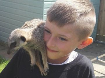 Draven Jefferies con una suricata