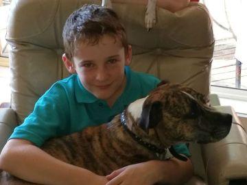 Cómo la muerte de este niño australiano salva la vida de tres personas