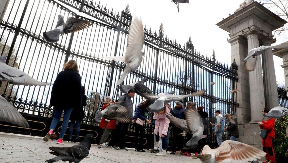 Un grupo de turistas se encuentra con las puertas cerradas del madrileño parque del Retiro.