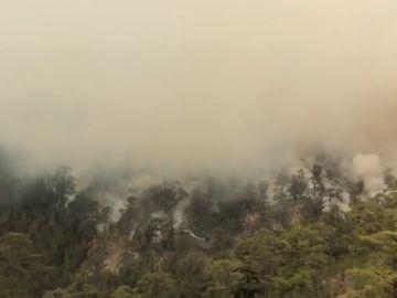 Efectivos del Cabildo y de la UME reanudan las labores de extinción del incendio que afecta al sur de Tenerife