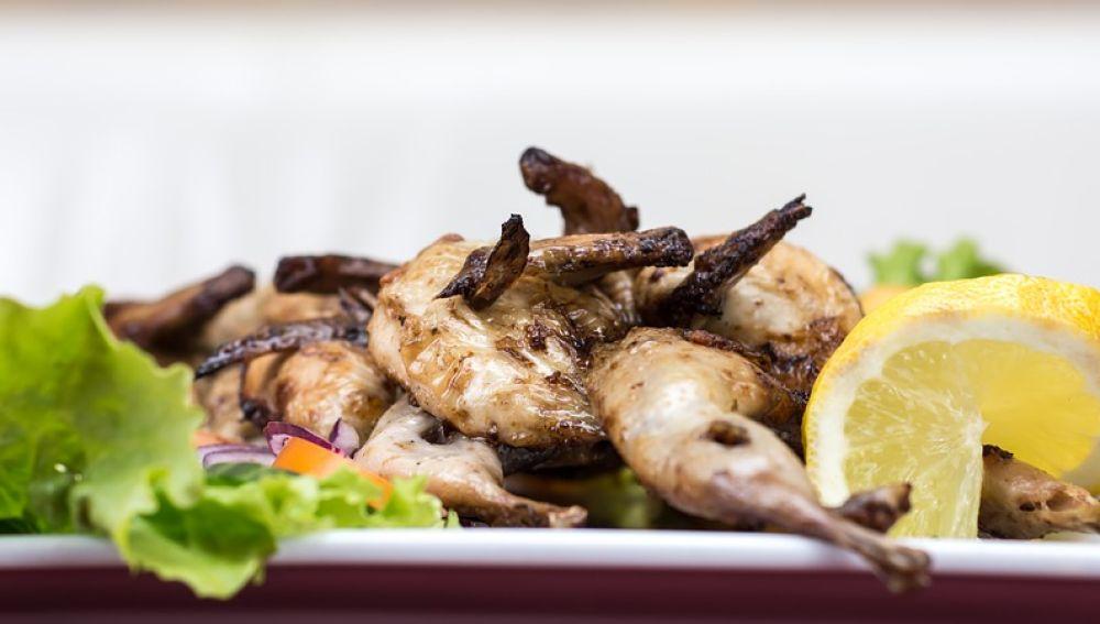 Pollo con ensalada
