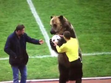 Un oso da el balón a un árbitro de fútbol