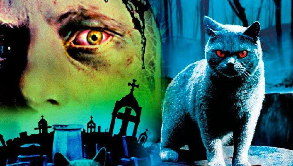 'Cementerio viviente' tendrá un remake