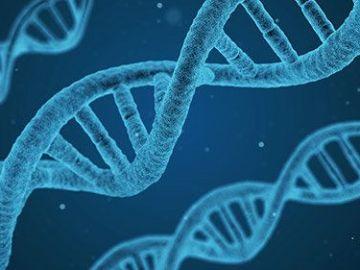 La edición genética, ¿el futuro para curar enfermedades?