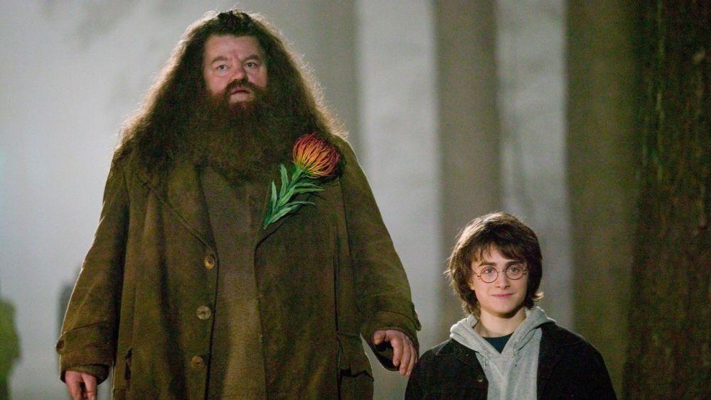 Hagrid en 'Harry Potter y el Cáliz de Fuego'