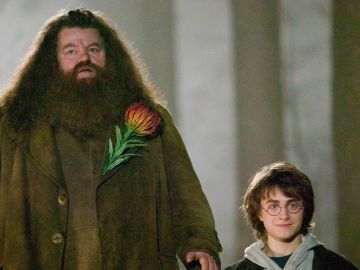 Hagrid y Harry Potter