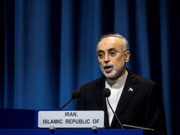 El responsable de la autoridad nuclear de Irán, Ali Akbar Salehi