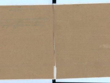 Las páginas secretas del diario de Ana Frank