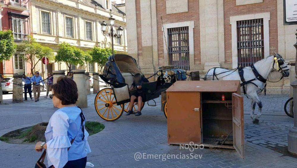 Cochero de caballos borracho en Sevilla