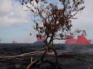 Un nuevo flujo de lava del volcán Kilauea se dirige hacia una planta geotérmica tras destruir uno de sus almacenes